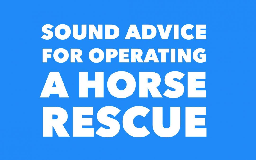 OPERATING A HORSE RESCUE