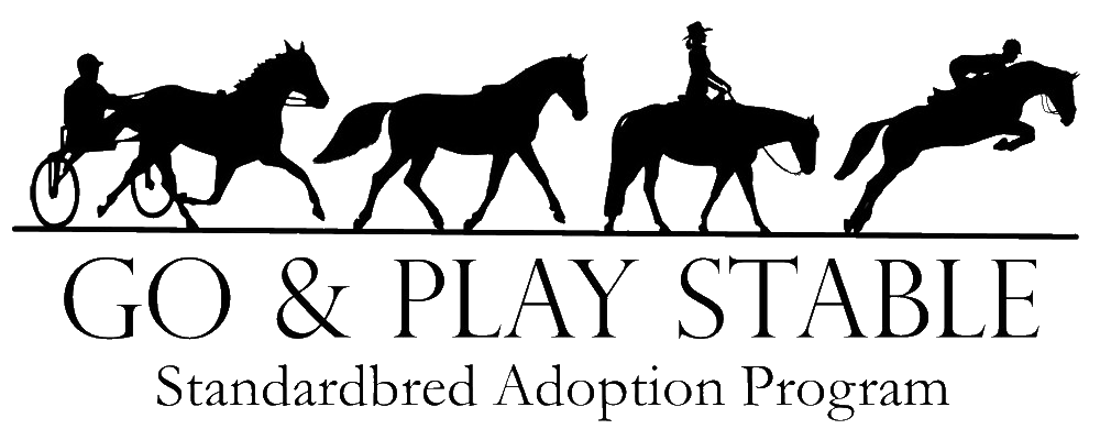TESTIMONIAL:  GO AND PLAY STABLE STANDARDBRED ADOPTION PROGRAM